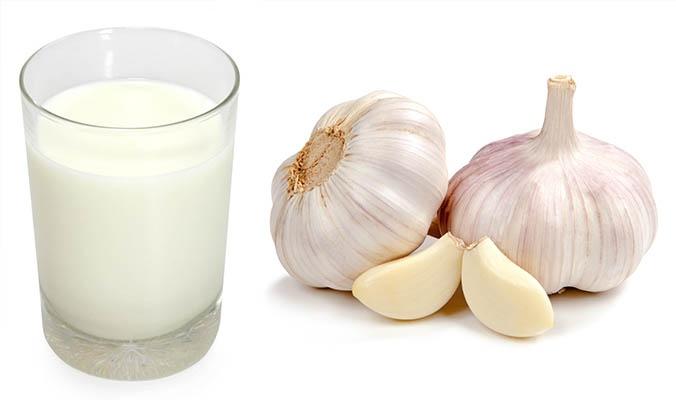 trị viêm họng bằng tỏi và sữa