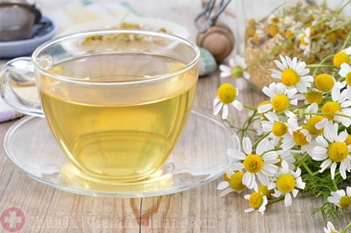 Bị viêm amidan khi mang thai nên uống trà hoa cúc