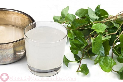 Kết hợp rau diếp cá và nước vo gạo trị viêm họng