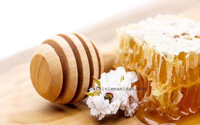 Trị ho lâu ngày bằng mật ong